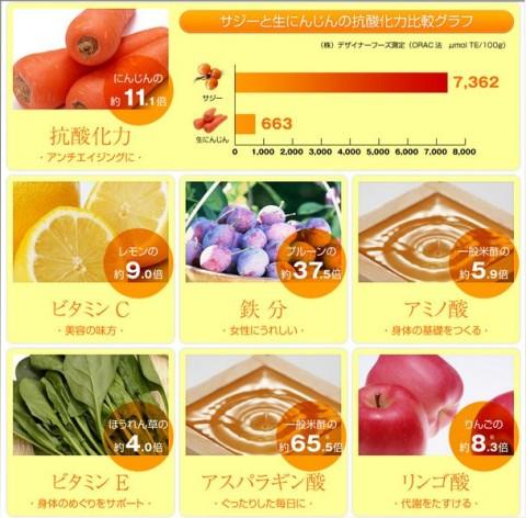 サジー栄養素